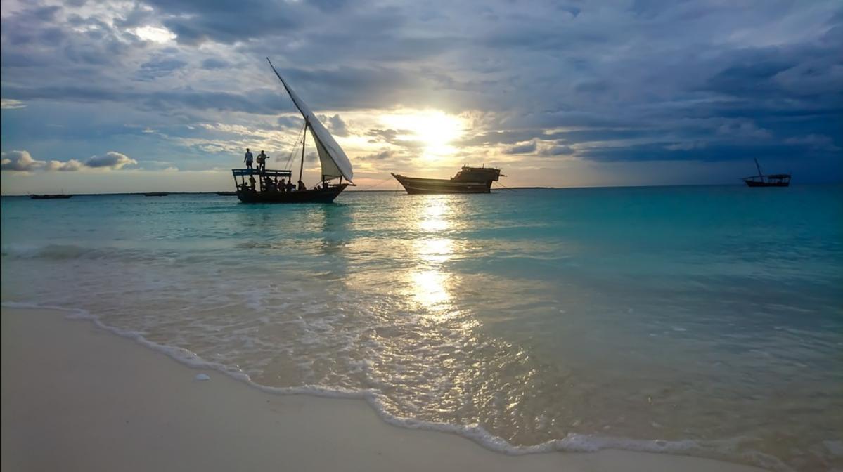 Museum Guide for Zanzibar