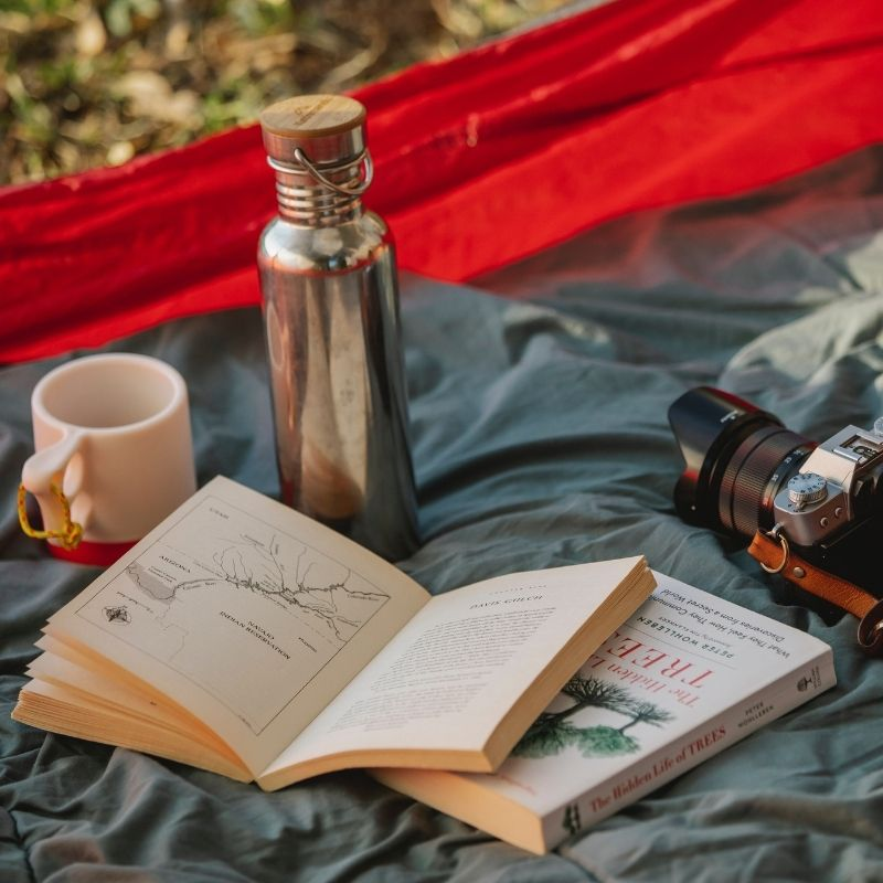 Must-Read Travel Books For Travellers
